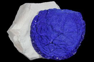 "2"" Brilliant Blue Azurite Sun - Australia For Sale, #77288"