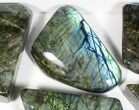 Wholesale Lot: 20 Lbs Free-Standing Polished Labradorite - 8 Pieces - #77657-1