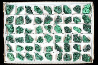 Malachite  - Fossils For Sale - #77802