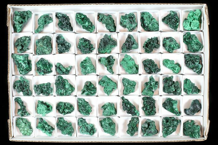 Wholesale Lot: Gorgeous Fibrous Malachite From Congo - 54 Pieces