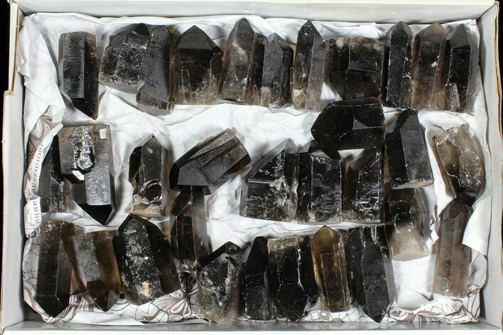 "Wholesale Lot: 20 Lbs Cut base Smoky Quartz Crystals (2-4"") - Brazil"