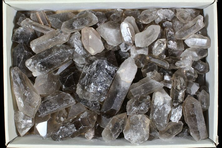 "Wholesale Lot: 25 Lbs Smoky Quartz Crystals (2-4"") - Brazil"