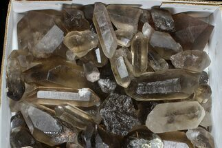 "Buy Wholesale Lot: 22 Lbs Smoky Quartz Crystals (2-4"") - Brazil - #77830"