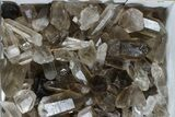 "Wholesale Lot: 23 Lbs Smoky Quartz Crystals (2-4"") - Brazil - #77840-1"