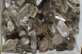 "Wholesale Lot: 23 Lbs Smoky Quartz Crystals (2-4"") - Brazil - #77840-2"