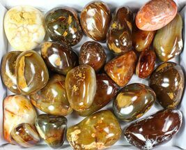 Wholesale Lot: 25 Lbs Polished Carnelian Agate - 23 Pieces For Sale, #77915