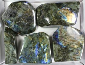Wholesale Lot: 30 Lbs Free-Standing Polished Labradorite - 5 Pieces For Sale, #78026