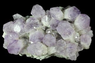 Quartz var. Amethyst - Fossils For Sale - #78141