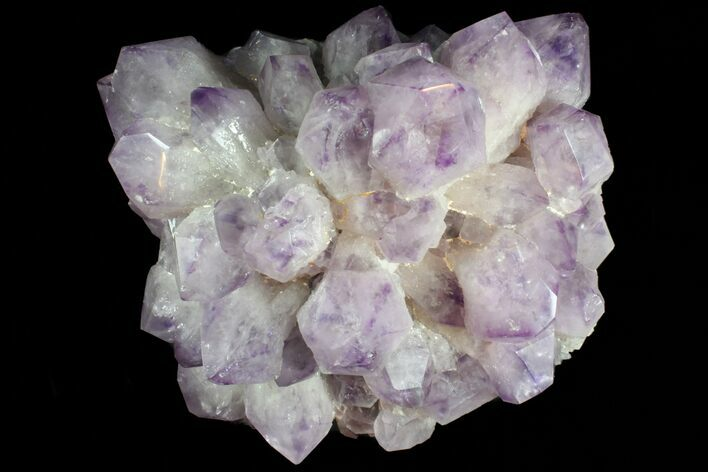 "14"" Wide Amethyst Crystal Cluster - Spectacular Display Piece"