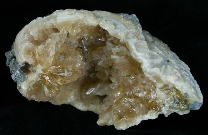 Calcite Crystal Filled Clam Fossil - 3.9""