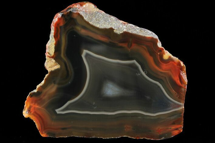 "2.6"" Beautiful Condor Agate From Argentina - Cut/Polished Face"