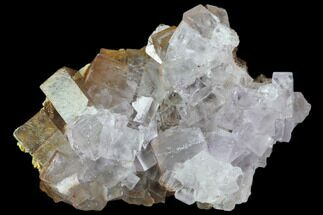 Fluorite, Barite - Fossils For Sale - #80292