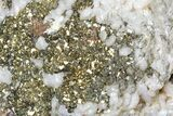 "4"" Pyrite On Calcite - El Hammam Mine, Morocco - #80712-1"
