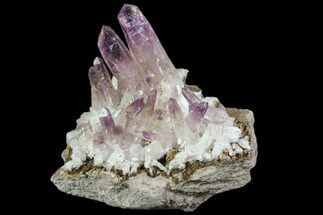 Quartz var. Amethyst - Fossils For Sale - #80613