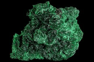 Malachite  - Fossils For Sale - #81759