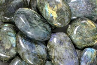 Labradorite - Fossils For Sale - #81300
