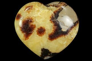 "Buy 2.9"" Polished Septarian Heart - #82021"