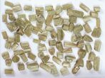 Wholesale Flot:  1440g Apatite Crystals From Morocco - 150+ Pieces - #82342-2