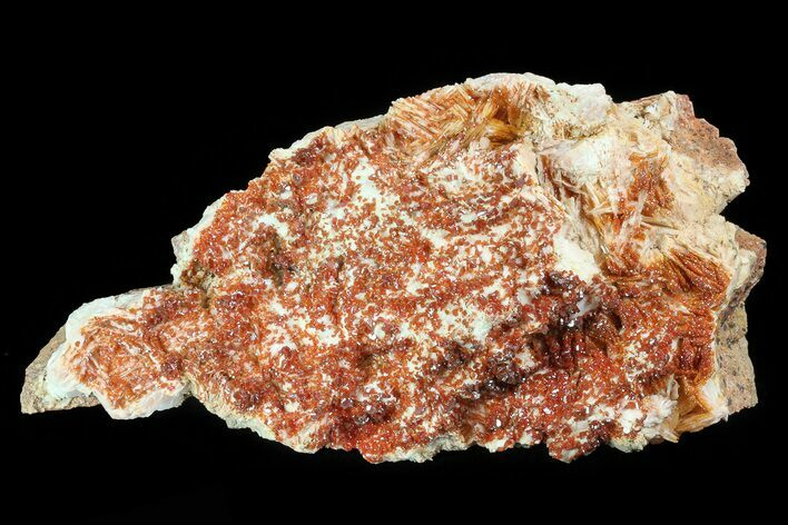 "7.6"" Ruby Red Vanadinite Crystals on Pink Barite - Morocco"