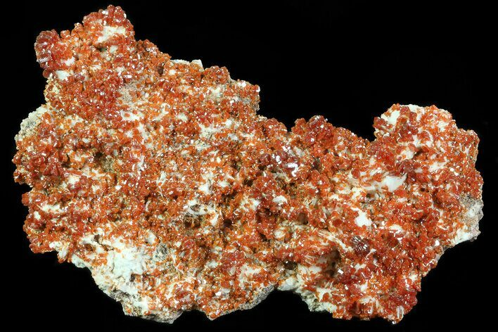 "4.6"" Ruby Red Vanadinite Crystals on Pink Barite - Morocco"