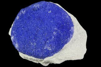 ".4"" Brilliant Blue Azurite Sun - Australia For Sale, #82679"