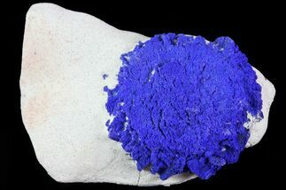".7"" Brilliant Blue Azurite Sun - Australia For Sale, #82685"