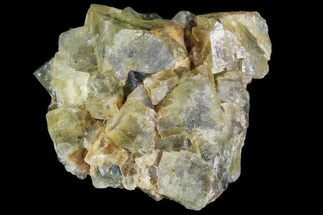 "Buy 1.8"" Yellow/Green Cubic Fluorite Crystal Cluster - Morocco - #82801"