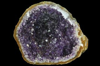 Quartz var. Amethyst - Fossils For Sale - #83541