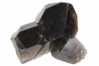 "Buy 3.6"" Dark Smoky Quartz Crystal - Brazil - #84820"