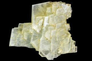 Barite - Fossils For Sale - #84879