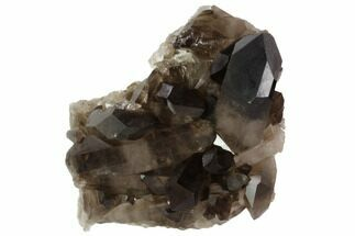 "4"" Dark Smoky Quartz Crystal Cluster - Brazil For Sale, #84845"