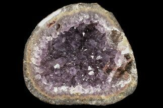 "6.3"" Amethyst Geode With Polished Edges - Uruguay For Sale, #87494"