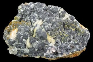 "Buy 4.4"" Cerussite Crystals with Bladed Barite on Galena - Morocco - #90229"