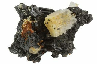 Tourmaline var. Schorl & Goshenite - Fossils For Sale - #90690