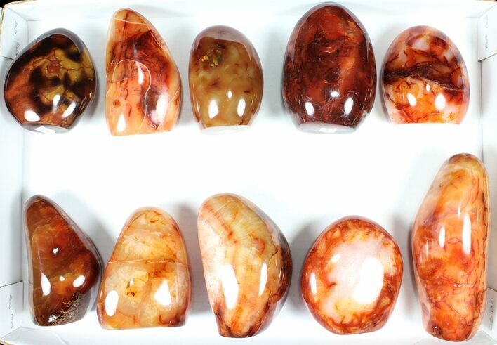 "Wholesale Lot: 3-5.5"" Cut Base Polished Carnelian - 10 pieces"