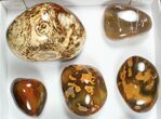 Wholesale Lot: 11 lbs Polished Carnelian Agate - 9 Pieces - #91853-2