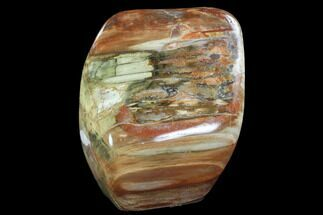 "5.9"" Tall, Polished Petrified Wood Freeform Sculpture For Sale, #92363"