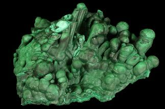 "Buy 4.2"" Beautiful Malachite Stalactite Cluster - Congo - #92884"