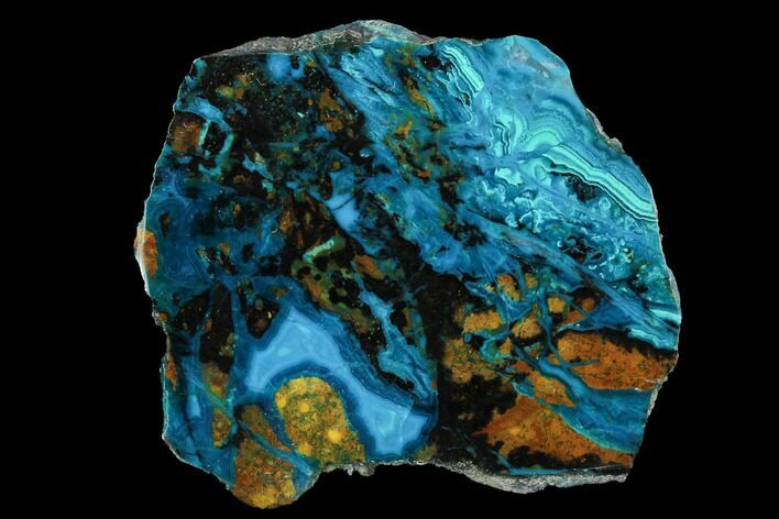 "2.05"" Polished Chrysocolla & Plume Malachite - Bagdad Mine, Arizona"