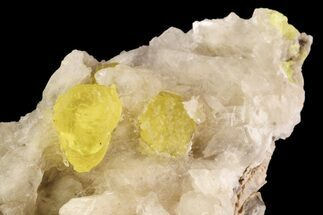 "3.8"" Sulfur Crystals & Selenite on Matrix - Italy For Sale, #93656"