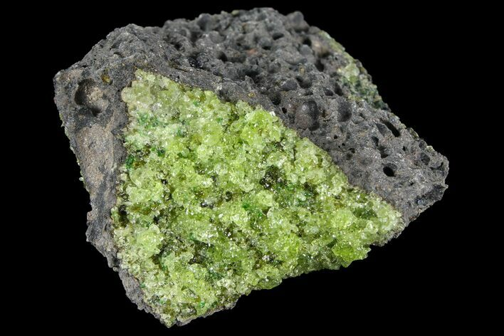 "3.4"" Peridot in Basalt - Arizona"