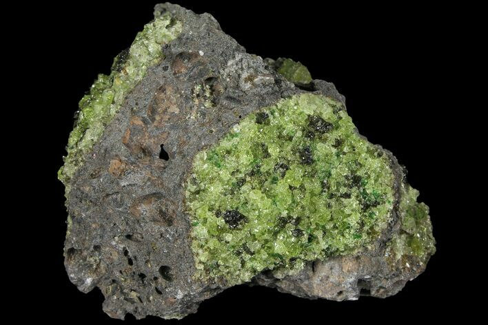"3.2"" Peridot in Basalt - Arizona"