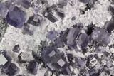 "3.5"" Purple Fluorite Crystals with Quartz - China - #94932-2"