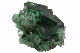 "Buy 1.4"" Fluorite Crystal Cluster -  Rogerley Mine - #94537"