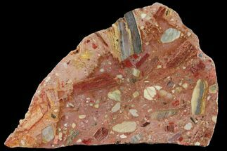 "5.5"" Polished Chert Breccia Slab - Western Australia For Sale, #95441"