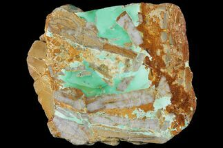 "3.2"" Polished Variscite Slab - Goscoyne, Australia For Sale, #95867"