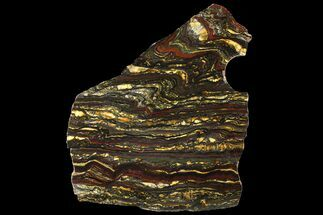 "8.2"" Polished Tiger Iron Slab - (2.7 Billion Years Old) For Sale, #95906"