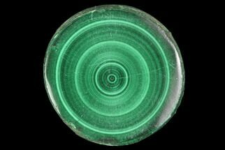 Malachite - Fossils For Sale - #94467
