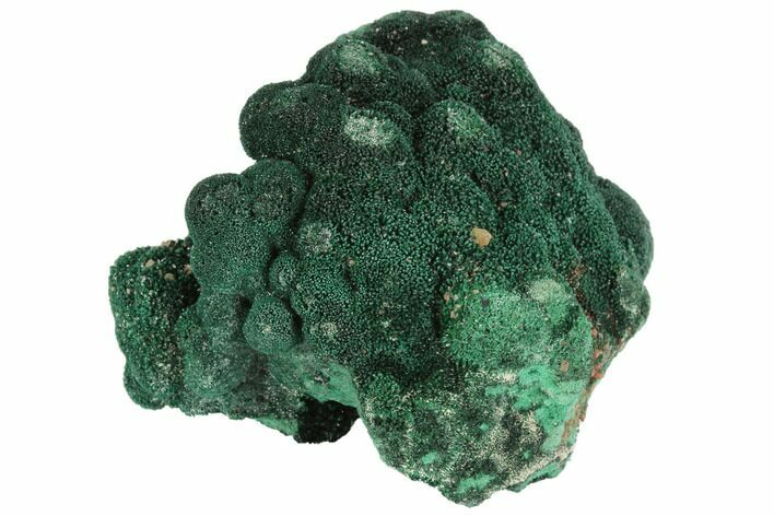 "2.4"" Vivid Green, Atacamite Crystal Cluster - South Australia"