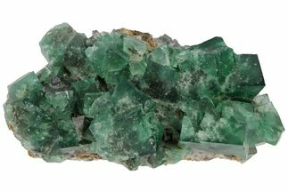 "Buy 2.8"" Highly Fluorescent, Green, Fluorite Cluster -  Rogerley Mine - #97882"